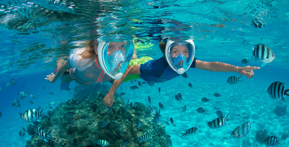 Tribord Easybreath Full Face Snorkeling Mask- Should You Get One?